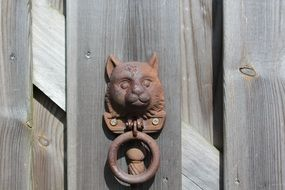 old wood door decoration doorknob metal cat