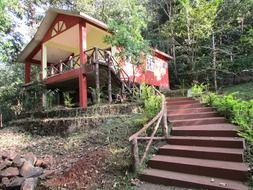red stairs to building at forest, india, dandeli
