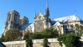 notre dame cathedral at summer, france, paris
