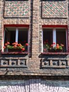 blooming red geranium in flower boxes at windows on old facade, poland, katowice