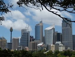 cityscape with skyscrapers, australia, sydney