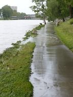 high water on danube river, germany, ulm