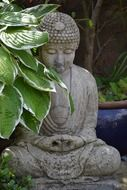 grey stone buddha sculpture among plants