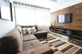 apartment living room brown colors