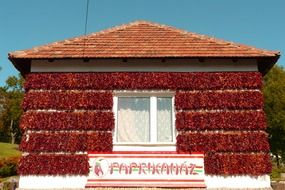 red pepper drying on wall of village house, hungary