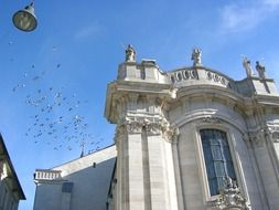 pigeons in sky above cathedral, germany, eichstatt