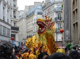 chinese new year in paris france