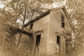 abandoned wood old house black white photo