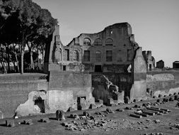 Ancient historical ruins of Rome