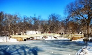 frozen central park new york