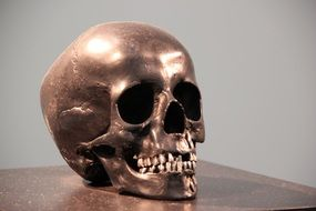 sculpture of bronze skull