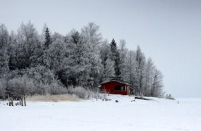 red hut near winter forest in Finland