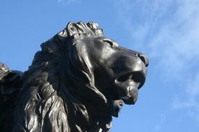detail of lion sculpture, head at sky, uk, england, london