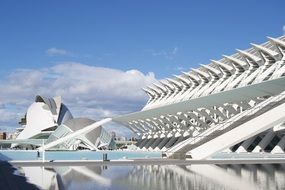 beautiful buildings in city of arts and sciences, spain, valencia