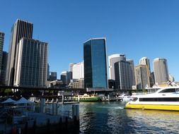 boats in port at city, australia, sydney