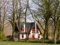 old house among trees at spring, netherlands
