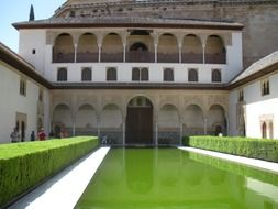 mirroring pond in courtyard of alhambra palace, spain, granada