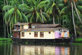 house boat on water beneath palm trees
