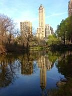 park with a pond in New York City