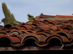 tiles roofing clay terracotta roof