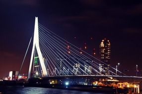 Rotterdam bridge night shot
