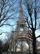 eiffel tower through trees Paris