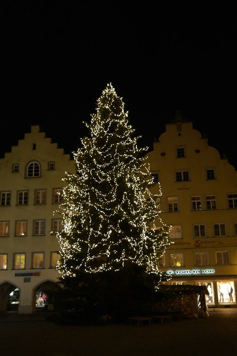 christmas lichterkette tree town hall square