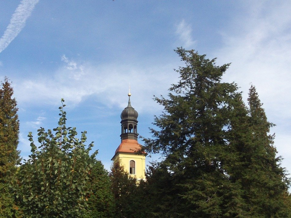 steeple among green trees at blue sky