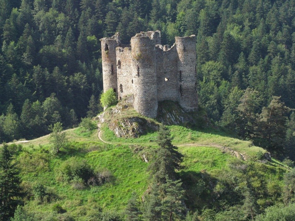 scenic ruins of medieval castle on hill at forest, france