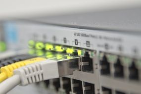 Macro photo of ethernet switch