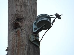 telephone pole wire poles