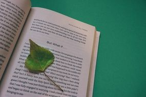 open book with a leaf