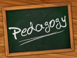 studying of pedagogy