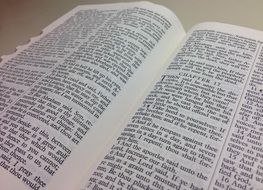 the bible script pages