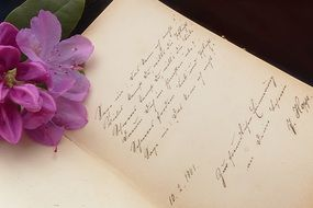 poetry album and purple flower