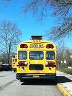 yellow school bus on a sunny day