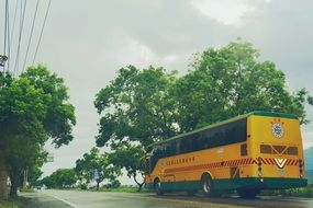 yellow school bus on a cloudy day