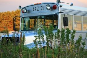 school bus baz 21