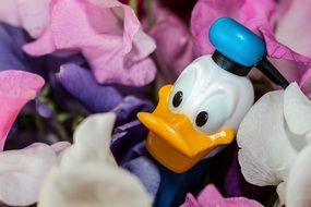 donald duck in flowers