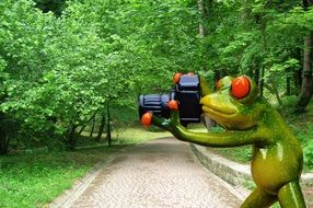 funny frog photographer with camera