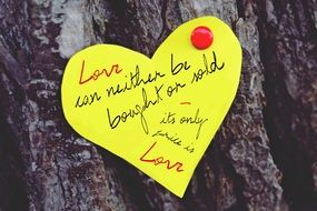 yellow love note on a tree
