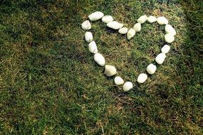 stones on the grass as a heart
