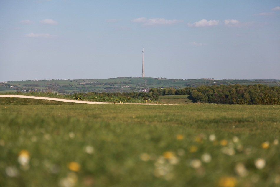 distant television tower and fields with colorful plants