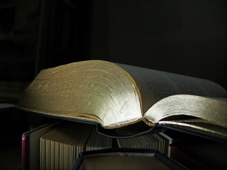a side view of an open book