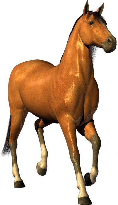 computer generated image of a brown thoroughbred horse