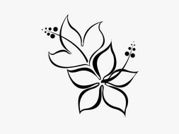 Hibiscus Flower Tattoo Design drawing