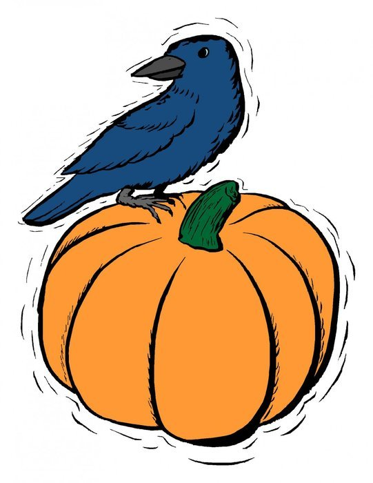raven on pumpkin, Halloween, drawing