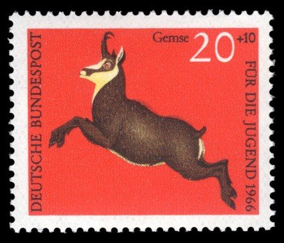 postage stamp with a goat