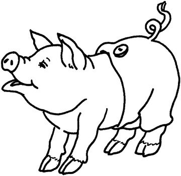 coloring page with a pig