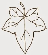 outline of Ivy Leaf, Clip Art